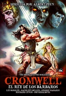 The Sword and the Sorcerer - Spanish DVD movie cover (xs thumbnail)