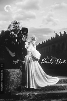 La belle et la bête - DVD movie cover (xs thumbnail)