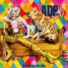 Harley Quinn: Birds of Prey - Argentinian Movie Poster (xs thumbnail)