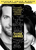 Silver Linings Playbook - DVD movie cover (xs thumbnail)