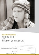 The Sheik - DVD cover (xs thumbnail)
