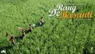 Rang De Basanti - Indian Movie Poster (xs thumbnail)