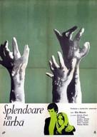 Splendor in the Grass - Romanian Movie Poster (xs thumbnail)
