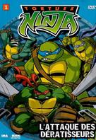 """Teenage Mutant Ninja Turtles"" - Canadian DVD cover (xs thumbnail)"