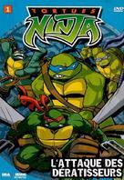 """Teenage Mutant Ninja Turtles"" - Canadian DVD movie cover (xs thumbnail)"