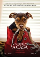 A Dog's Way Home - Argentinian Movie Poster (xs thumbnail)