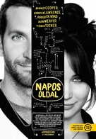 Silver Linings Playbook - Hungarian Movie Poster (xs thumbnail)