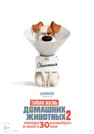 The Secret Life of Pets 2 - Kazakh Movie Poster (xs thumbnail)