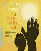 A Raisin in the Sun - Blu-Ray cover (xs thumbnail)