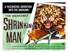 The Incredible Shrinking Man - Movie Poster (xs thumbnail)