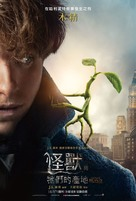 Fantastic Beasts and Where to Find Them - Chinese Movie Poster (xs thumbnail)