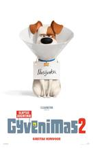 The Secret Life of Pets 2 - Lithuanian Movie Poster (xs thumbnail)