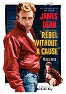 Rebel Without a Cause - French DVD movie cover (xs thumbnail)