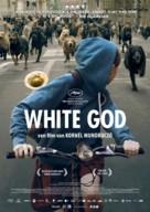Fehér isten - Dutch Movie Poster (xs thumbnail)