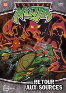 """Teenage Mutant Ninja Turtles"" - French DVD movie cover (xs thumbnail)"