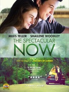 The Spectacular Now - DVD cover (xs thumbnail)