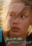 La vie d'Adèle - Movie Cover (xs thumbnail)
