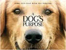 A Dog's Purpose - British Movie Poster (xs thumbnail)