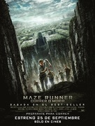 The Maze Runner - Bolivian Movie Poster (xs thumbnail)