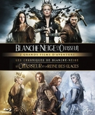 The Huntsman: Winter's War - French Movie Cover (xs thumbnail)