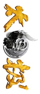 Tai Chi 0 - Chinese Logo (xs thumbnail)