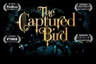 The Captured Bird - Canadian Logo (xs thumbnail)