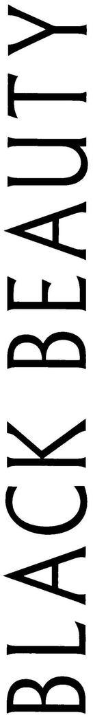 Black Beauty - Logo (xs thumbnail)