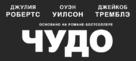Wonder - Russian Logo (xs thumbnail)