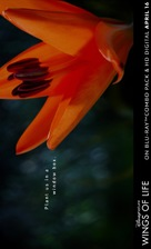 Pollen - poster (xs thumbnail)