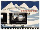 Spellbound - Polish Movie Poster (xs thumbnail)
