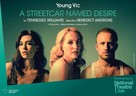 National Theatre Live: A Streetcar Named Desire - British Movie Poster (xs thumbnail)