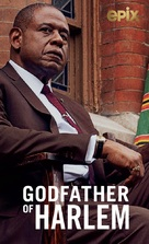 """The Godfather of Harlem"" - Video on demand movie cover (xs thumbnail)"