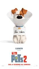 The Secret Life of Pets 2 - Italian Movie Poster (xs thumbnail)