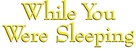 While You Were Sleeping - Logo (xs thumbnail)