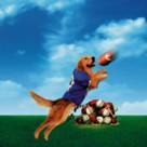 Air Bud: Golden Receiver - Key art (xs thumbnail)