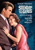 Splendor in the Grass - DVD cover (xs thumbnail)