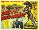 Last of the Wild Horses - Movie Poster (xs thumbnail)