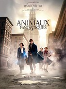 Fantastic Beasts and Where to Find Them - French Movie Poster (xs thumbnail)