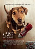 A Dog's Way Home - Romanian Movie Poster (xs thumbnail)