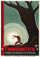 Frankenstein - Swedish Movie Poster (xs thumbnail)