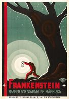 Frankenstein - Swedish Movie Poster (xs thumbnail)
