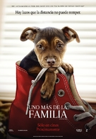 A Dog's Way Home - Spanish Movie Poster (xs thumbnail)