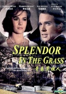 Splendor in the Grass - Chinese DVD cover (xs thumbnail)