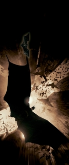 Batman Begins - Key art (xs thumbnail)