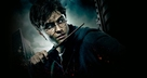 Harry Potter and the Deathly Hallows: Part I - French Key art (xs thumbnail)