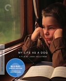 Mitt liv som hund - Blu-Ray movie cover (xs thumbnail)