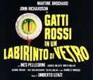 Gatti rossi in un labirinto di vetro - Italian Logo (xs thumbnail)