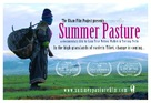 Summer Pasture - Movie Poster (xs thumbnail)