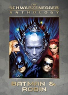 Batman And Robin - DVD movie cover (xs thumbnail)