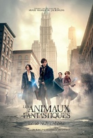 Fantastic Beasts and Where to Find Them - Canadian Movie Poster (xs thumbnail)
